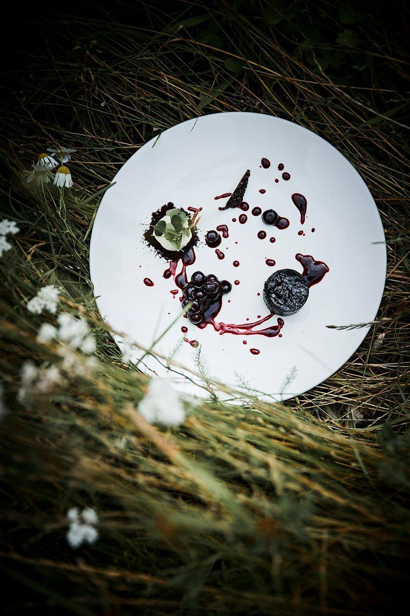 Chocolate dessert with bush blueberries and sauce of birch sap syrup and aronia juice